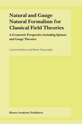 Natural and Gauge Natural Formalism for Classical Field Theorie: A Geometric Perspective including Spinors and Gauge Theories (Paperback)