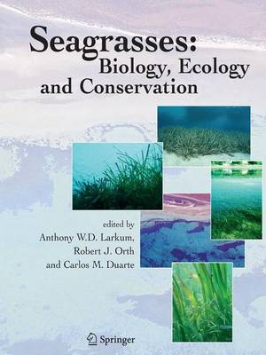 Seagrasses: Biology, Ecology and Conservation (Paperback)