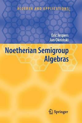 Noetherian Semigroup Algebras - Algebra and Applications 7 (Paperback)