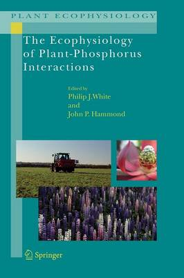 The Ecophysiology of Plant-Phosphorus Interactions - Plant Ecophysiology 7 (Paperback)