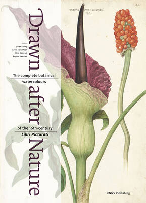 Drawn after Nature: The Complete Botanical Watercolours of the 16th-Century Libri Picturati (Hardback)