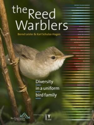 The Reed Warblers: Diversity in a Uniform Bird Family (Hardback)