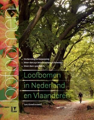 Loofbomen in Nederland en Vlaanderen [Deciduous Trees in the Netherlands and Flanders] (Hardback)