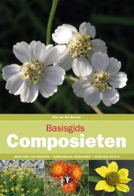 Basisgids Composieten [Basic Guide to Compositae] (Paperback)