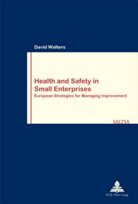 Health and Safety in Small Enterprises - Travail & Societe/Work & Society 31 (Paperback)