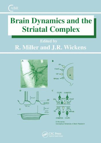Brain Dynamics and the Striatal Complex - Conceptual Advances in Brain Research (Hardback)