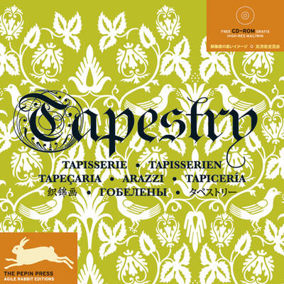 Tapestry/ Tapisserie - Fashion & Textiles (Paperback)