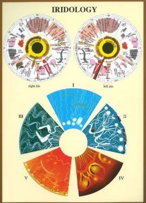 Iridology -- A4 (Poster)