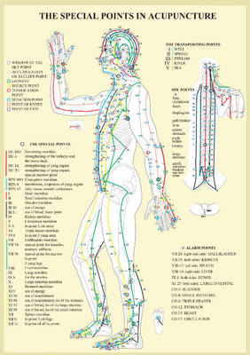 Special Points in Acupunture -- A4 (Poster)
