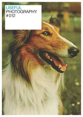 Useful Photography 12 (Paperback)