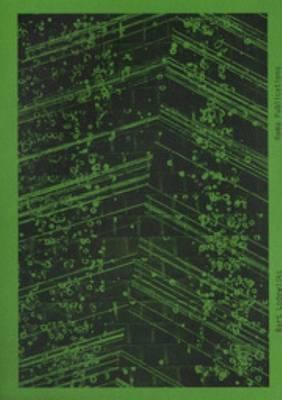 Bart Lodewijks - the Flanders Peninsula (Paperback)
