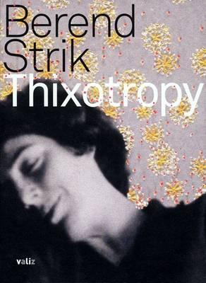 Berend Strik: Thixotropy (Hardback)