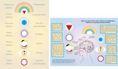 Lesser-Known Chakras - A4 (Poster)