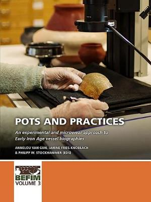 Pots and practices: An experimental and microwear approach to Early Iron Age vessel biographies - BEFIM 3 (Hardback)