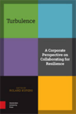 Turbulence: A Corporate Perspective on Collaborating for Resilience (Hardback)
