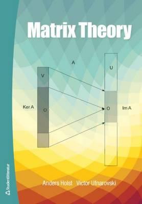 Matrix Theory (Paperback)