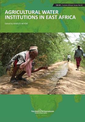 Agricultural Water Institutions in East Africa (Paperback)