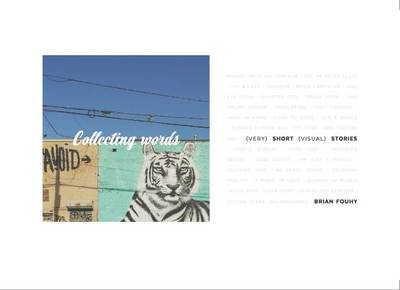Collecting Words: (Very) Short (Visual) Stories (Paperback)