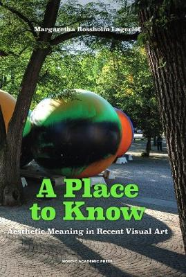 A Place to Know: Aesthetic Meaning in Recent Visual Art (Hardback)