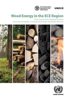 Wood Energy in the ECE Region: Data, Trends and Outlook in Europe, the Commonwealth of Independent States and North America (Paperback)