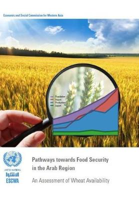 Pathways towards food security in the Arab region: an assessment of wheat availability (Paperback)