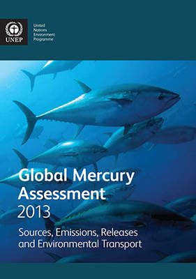 Global mercury assessment 2013: sources, emissions, releases and environmental transport (Paperback)