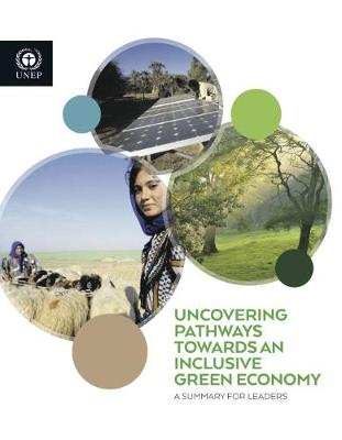 Uncovering pathways towards an inclusive green economy: a summary for leaders (Paperback)