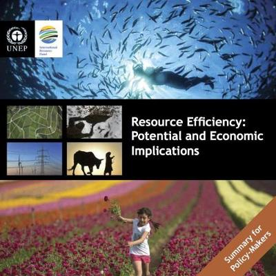 Resource efficiency: potential and economic implications, summary for policy-makers (Paperback)