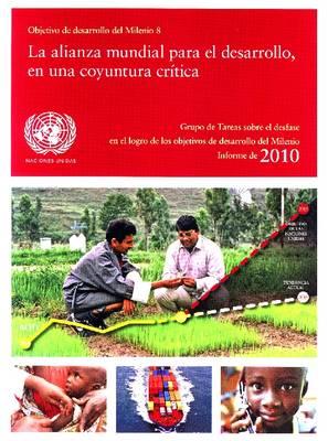 Objetivo de Desarrollo del Milenio 2010 (Paperback)