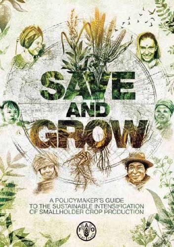 Save and Grow: A Policymaker's Guide to Sustainable Intensification of Smallholder Crop Production (Paperback)