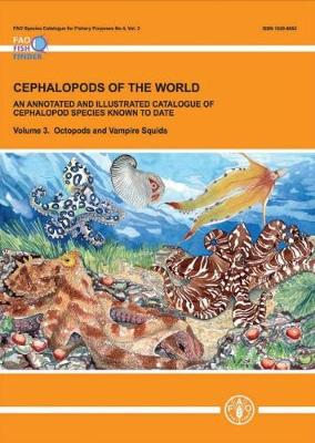 Cephalopods of the World: An Annotated and Illustrated Catalogue of Cephalopod Species Known to Date: Volume 3: Octopods and Vampire Squids (Paperback)