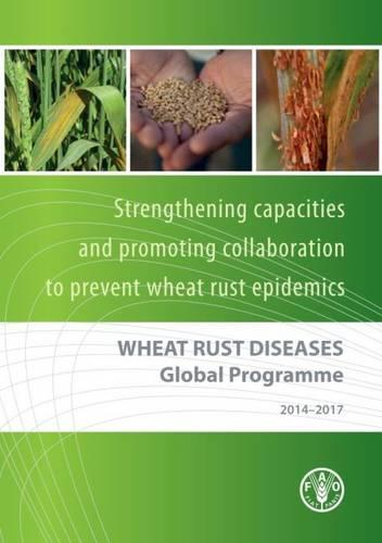 Wheat Rust Diseases Global Programme 2014-2017: strengthening capacities and promoting collaboration to prevent wheat rust epidemics (Paperback)