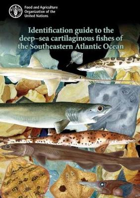 Identification Guide to the Deep-Sea Cartilaginous Fishes of the Southeastern Atlantic Ocean (Spiral bound)