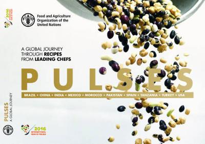Pulses: a global journey through recipes from leading chefs (Paperback)