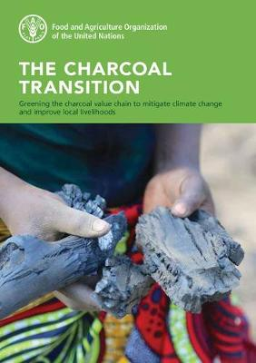The charcoal transition: greening the charcoal value chain to mitigate climate change and improve local livelihoods (Paperback)