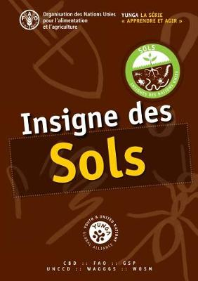 Insigne des sols - YUNGA Learning and Action Series - Challenge Badges (Paperback)