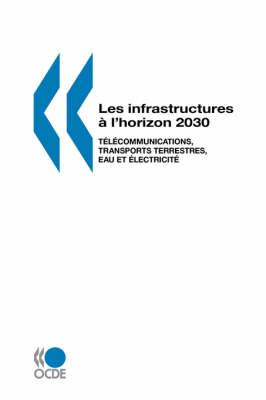 Les Infrastructures a L'horizon 2030: Telecommunications, Transports Terrestres, Eau Et Electricite (Paperback)