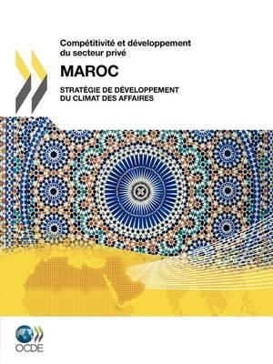 Comp Titivit Et D Veloppement Du Secteur Priv: Maroc 2010: Strat Gie de D Veloppement Du Climat Des Affaires (Paperback)