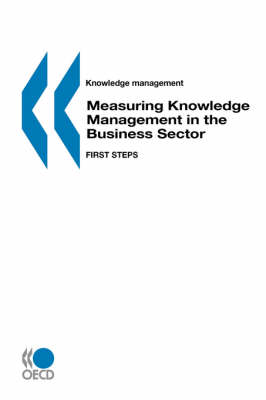 Measuring Knowledge Management in the Business Sector: First Steps (Paperback)
