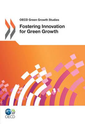 OECD Green Growth Studies (Paperback)