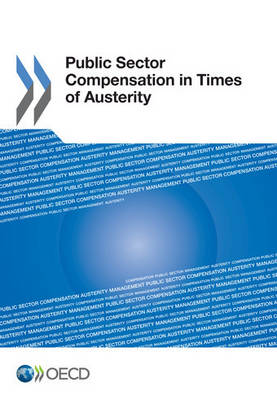 Public sector compensation in times of austerity (Paperback)