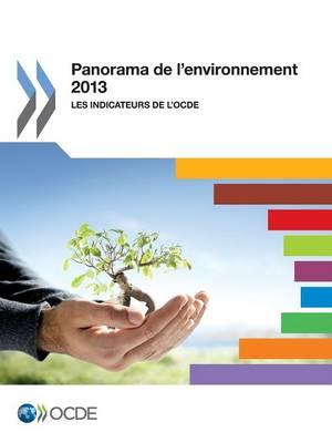 Panorama de L'Environnement 2013: Les Indicateurs de L'Ocde (Paperback)