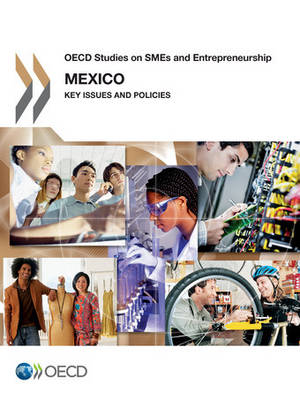 Mexico: key issues and policies - OECD studies on SMEs and entrepreneurship (Paperback)