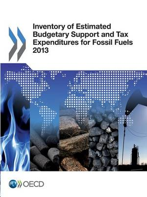 Inventory of estimated budgetary support and tax expenditures for fossil fuels 2013 (Paperback)