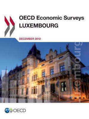 Luxembourg 2012 - OECD economic surveys 2012/Supplement (Paperback)