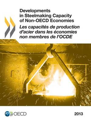 Developments in steelmaking capacity of non-OECD economies 2013 (Paperback)
