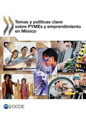 Temas y Politicas Clave Sobre Pymes y Emprendimiento En Mexico (Paperback)