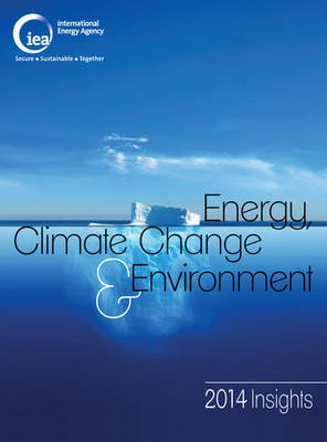 Energy, climate change & environment: 2014 insights (Paperback)