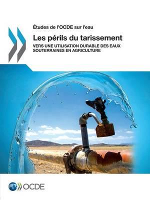 Etudes de L'Ocde Sur L'Eau Les Perils Du Tarissement: Vers Une Utilisation Durable Des Eaux Souterraines En Agriculture (Paperback)