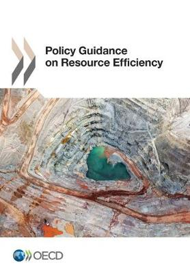 Policy Guidance on Resource Efficiency (Paperback)